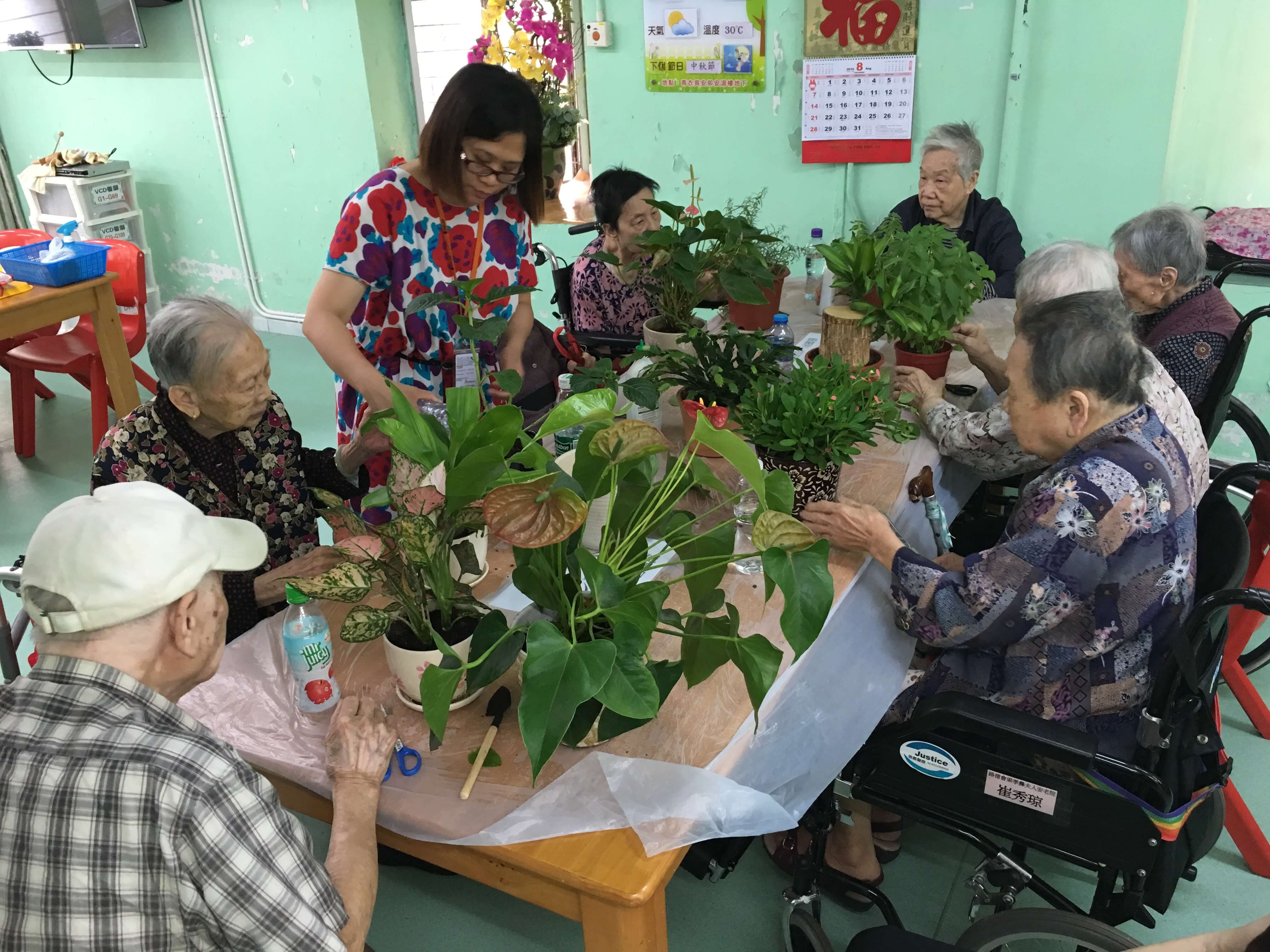 Therapeutic Horticultural Activities